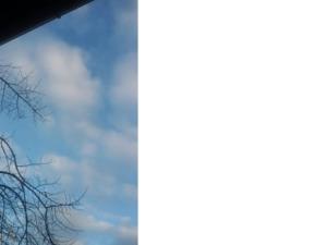 """Patricia dice """" il corpo è sulla terra ma la testa è là , tra le nuvole """""""