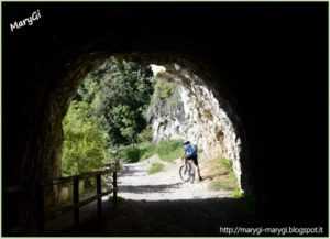 7-mountain-bike