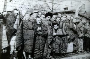 Auschwitz_Liberated_January_1945 (1)