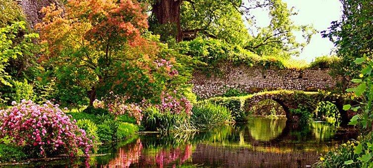 Latina antonella ponsillo presenta gli alberi del for Giardini di ninfa orari apertura 2015