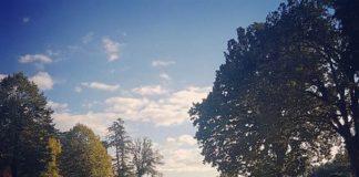 bosco di San Martino
